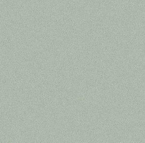 True 30x60 Light Grey Matt