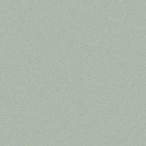 True 60x60 Light Grey Matt